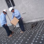 Contractors in Virginia fixing roof